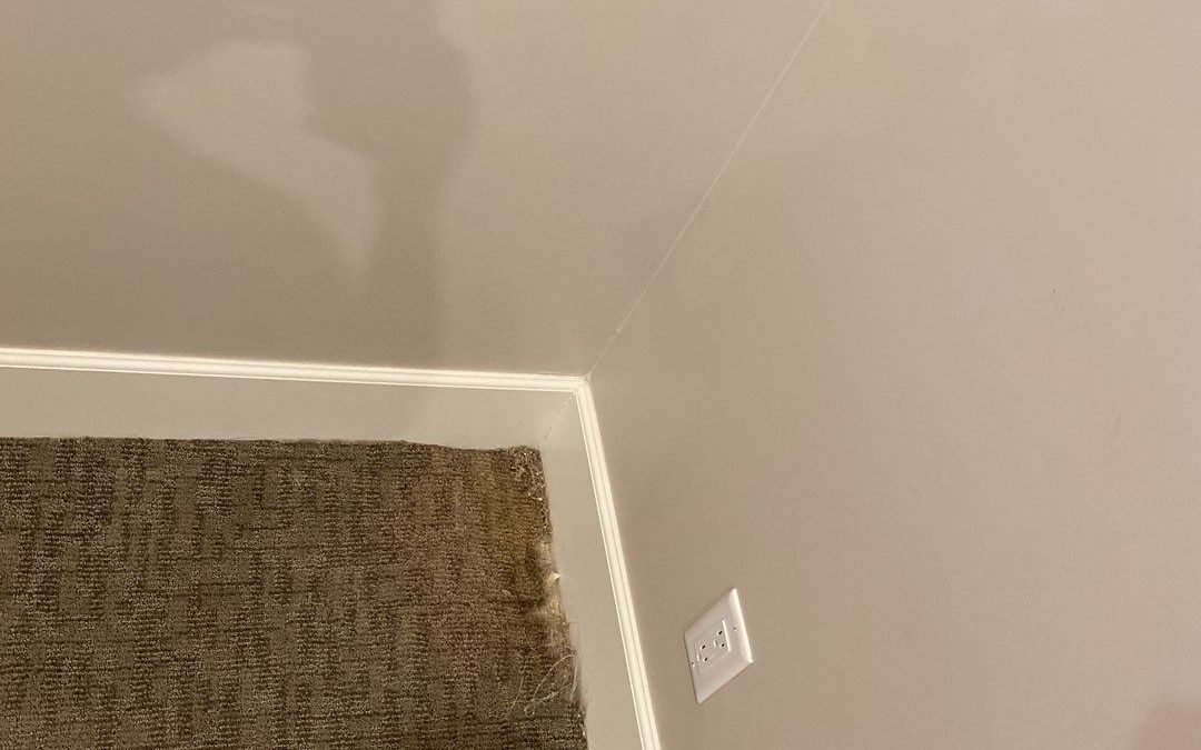 Queen Creek, AZ: Carpet Repair